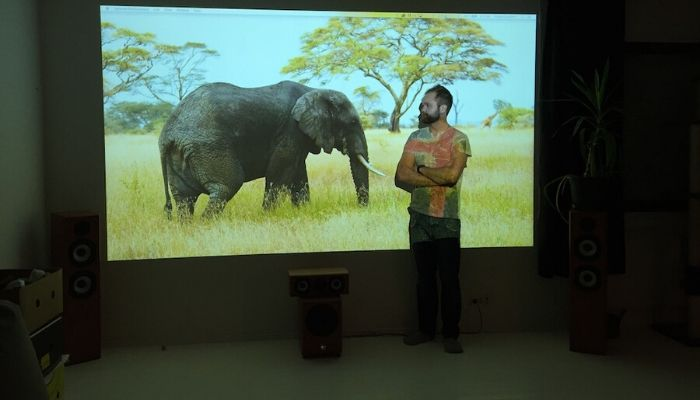 image-of-elephant-projected-on-home-theater-screen-in