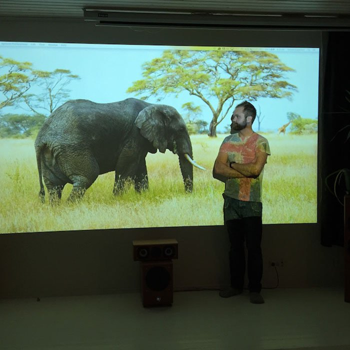 projection-of-elephant-in-office-how-to-make-a-projector-screen-wall